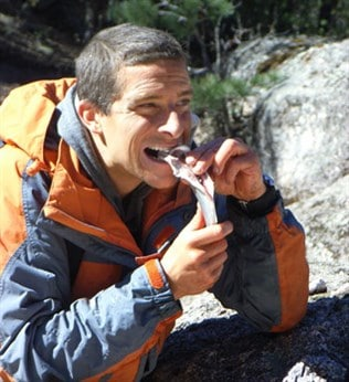 Bear Grylls AM Wicked